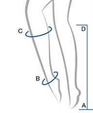 Misure caviglia e polpaccio
